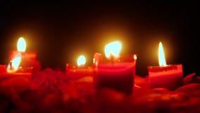 Миражируйте горящий отснятый видеоматериал для отпразднуйте день Валентайн с лепестками цветка сток-видео