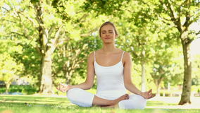 Мирная белокурая делая йога в парке сток-видео