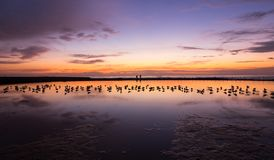 Мирное красочное небо восхода солнца на ванне Ньюкасл Австралии океана стоковая фотография rf