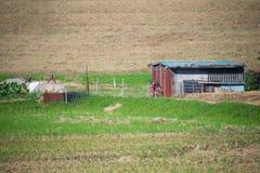 Мирное поле Стоковая Фотография