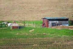 Мирное поле Стоковое фото RF