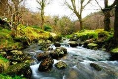 мирное река стоковое изображение rf