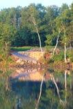 Мирное утро на озере стоковое фото