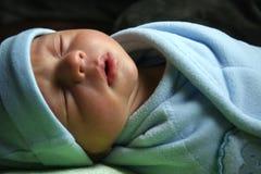 мирно спящ Стоковые Фото