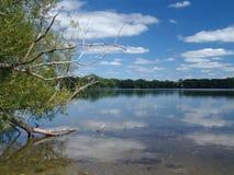мирные воды Стоковое Фото