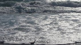 Мирные волны соли Стоковые Фотографии RF