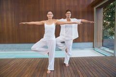 Мирные пары в белой делая йоге совместно в положении дерева Стоковые Фото