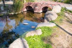 Мирные японские сад и пруд в Японии Стоковые Фото