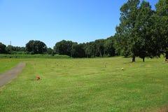 Мирный взгляд кладбища на день осени Стоковое Изображение RF