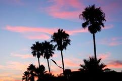 мирный заход солнца стоковое изображение rf
