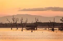 мирный пейзаж Стоковое фото RF