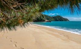 Мирный пляж песка с footrints на песке Залив Tasman, область Нельсон, Новая Зеландия стоковое фото rf