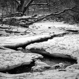 Мирный поток Snowy стоковая фотография rf