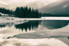 Мирный пруд в зиме Стоковое фото RF