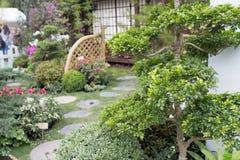 Мирный сад утеса Дзэн с заводом папируса стоковая фотография rf