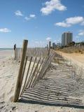 мирт пляжа Стоковая Фотография