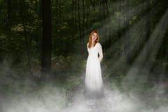 Мир, влюбленность, надежда, влюбленность, природа, красивая молодая женщина Стоковое Изображение