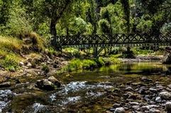 Мир естественный Стоковое Фото