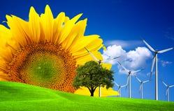 мир зеленого цвета экологичности принципиальной схемы стоковое изображение rf