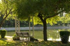 Мир и тишь и озеро стоковое изображение