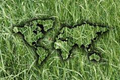 мир карты травы Стоковое фото RF