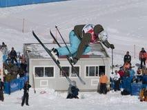 мир лыжи фристайла чашки Стоковое Изображение
