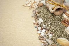 Мир моря Стоковая Фотография