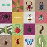 мир насекомого бабочки ветви Стоковые Изображения