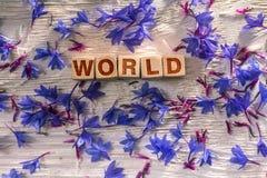 Мир на деревянных кубах стоковая фотография