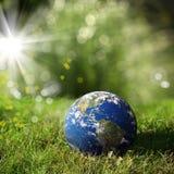 мир на зеленом цвете Стоковое Изображение RF