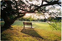 Мир на парке стоковые фото