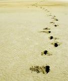 мир песка следа ноги Дубай мягкий стоковая фотография
