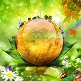 мир принципиальной схемы зеленый Стоковое Изображение RF