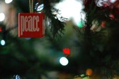 Мир рождества Стоковое Изображение RF