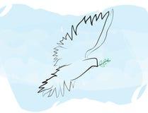 мир dove Стоковые Фотографии RF