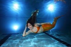 мир fairy сказа сирены моря mermaid подводный Стоковое Изображение