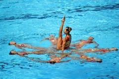 мир fina 13 чемпионатов Стоковое фото RF