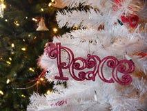 Мир Glittered орнамент рождества Стоковые Изображения RF