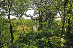 Миссури как увидено от следа леса Fontenelle стоковые фото