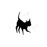 Мистик черного кота Стоковое фото RF