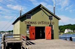 Мистик, CT: Устрица Co Томаса на мистическом морском порте стоковые фотографии rf