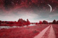 Мистическая ноча весны Стоковое фото RF