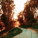 мистическая дорога Стоковые Фото