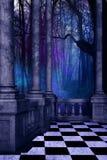 мистические древесины иллюстрация штока
