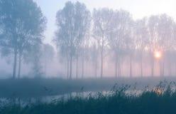 мистический восход солнца Стоковая Фотография
