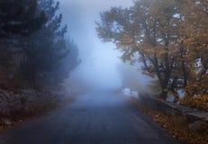 Мистический лес осени с дорогой в тумане Стоковая Фотография