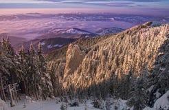 Мистический заход солнца зимы стоковая фотография