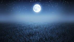 Мистический ночной полет над травой сток-видео