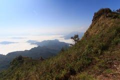 Мистический туман утра Стоковая Фотография RF