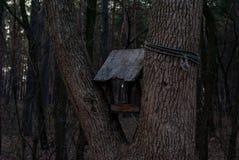 мистический birdhouse в лесе стоковое фото rf